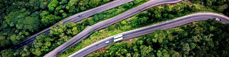 Bird's-eye view of highways through trees